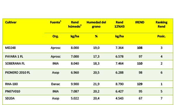 Cuadro 3. Resultados agronómicos y de rendimiento obtenido por los cultivares cosechados en parcelas de aprox. 500 m2, ensayo LISC en Arroz, ciclo norte-verano 2015-16.